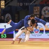 Grand Prix Tbilisi (2019, GEO) - © IJF Robin Willingham, International Judo Federation
